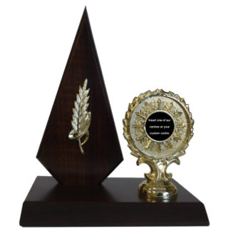 Wooden Arrow Award