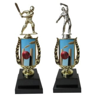 Cricket Sports Insert Trophy