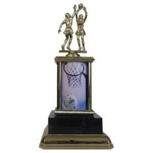 Netball Sports Insert Trophy