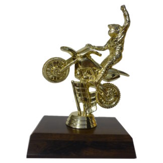 BMX Extreme Figurine