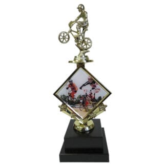 BMX Star Insert Trophy