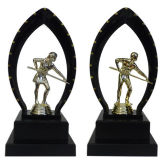 Billiards Trophy