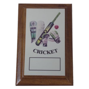 Cricket Plaque Award