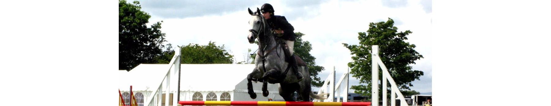 Equestrian Trophies & Medals