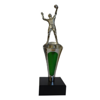 Volleyball Cup Award