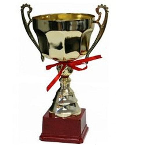 Metal Trophy Cups