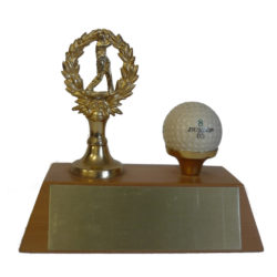 Male Golfer Trophy