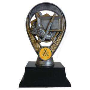 3D Hockey Award