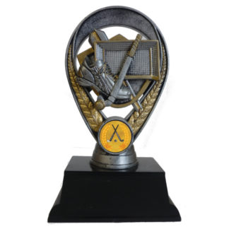 3D Hockey Award