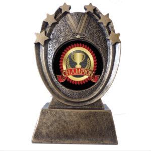 Resin Insert Medallion Award