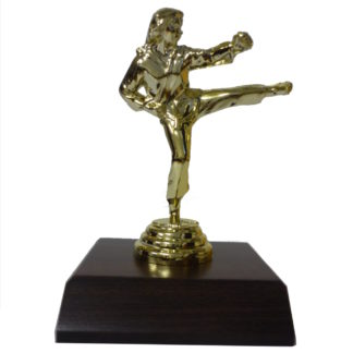 Karate Girl Figurine