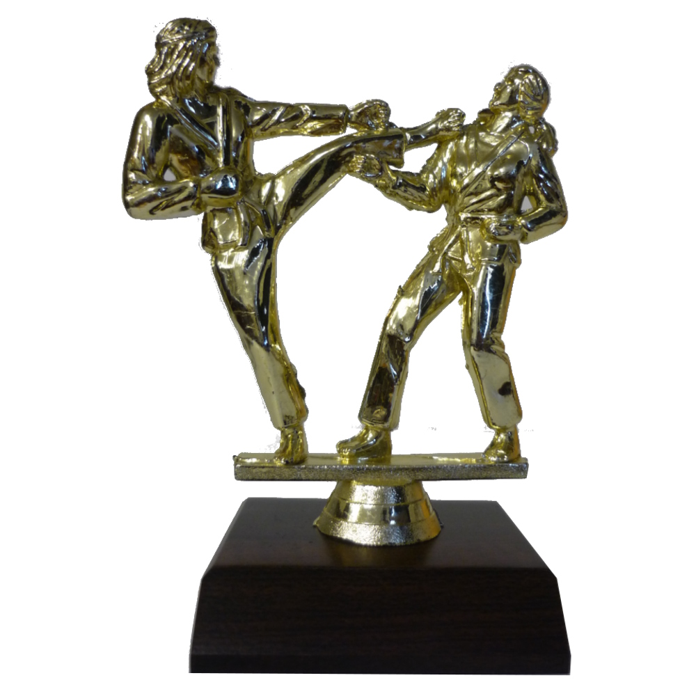 Karate Girls Trophy Figurine