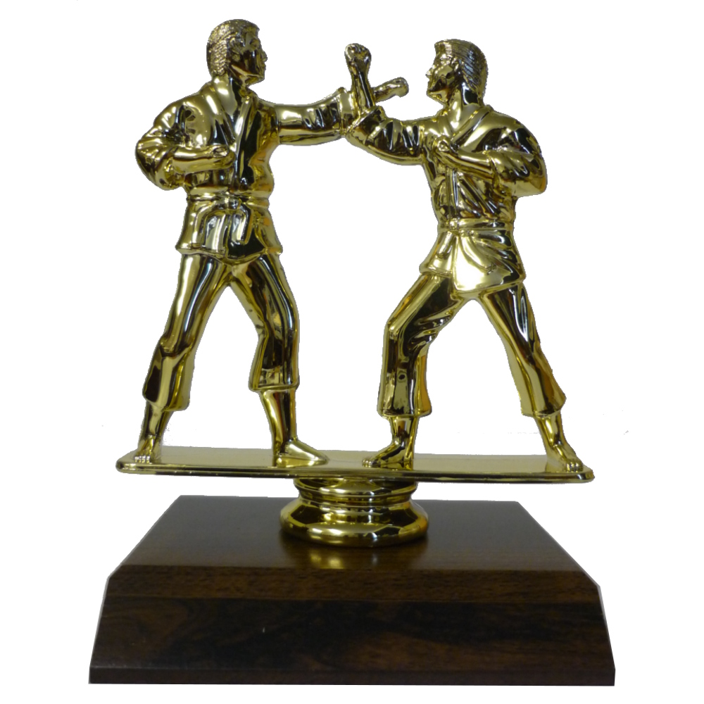 Karate Boys Trophy Figurine