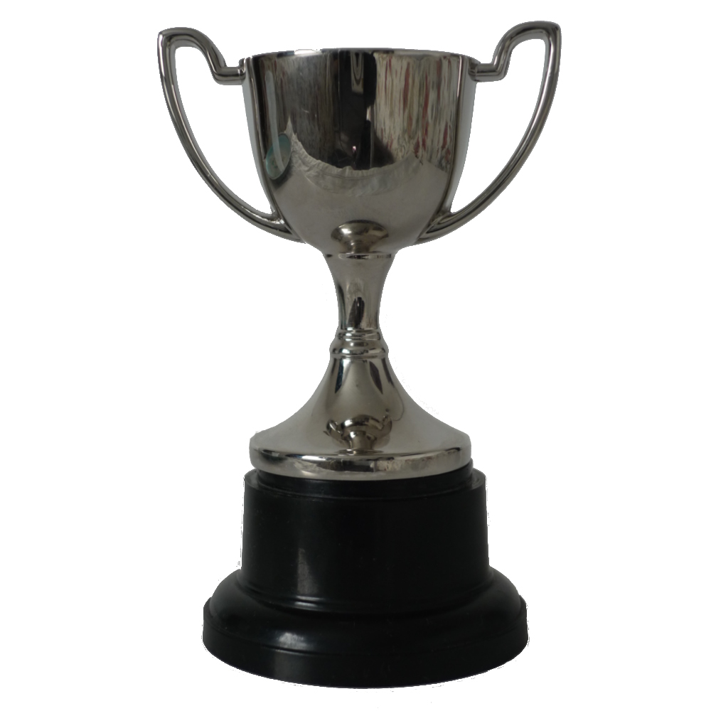 Miniature Trophy Cup