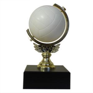 Netball Spinner Trophy