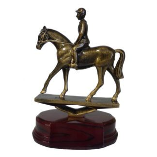 Horse and Rider Trophy