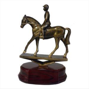 Horse & Rider Trophy