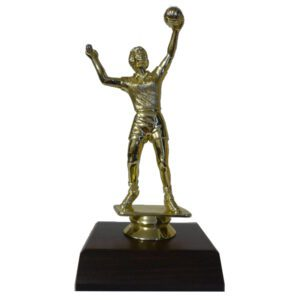 Volleyball Girl Trophy Figurine