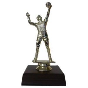 Volleyball Man Trophy Figurine