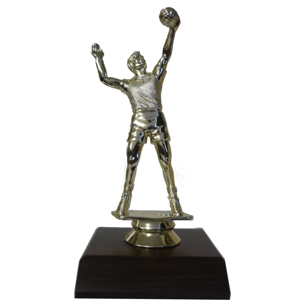 Volleyball Male Figurine On Base