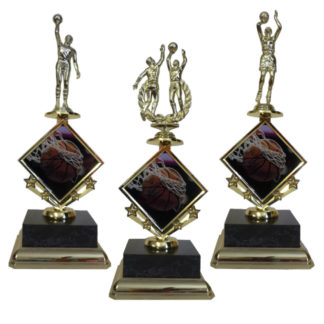 Basketball Star Insert Trophy