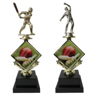 Cricket Star Insert Trophy