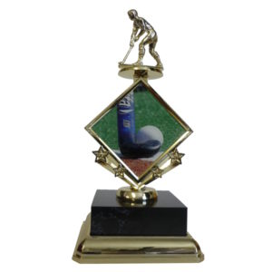 Hockey Star Insert Trophy