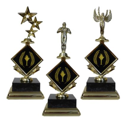 Victory Star Insert Trophy
