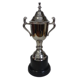 Cardiff Trophy Cup