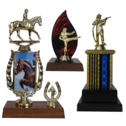 Activity Specific Trophies And Medals