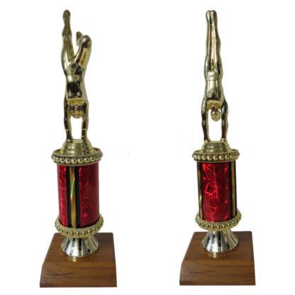 Gymnastics Trophy