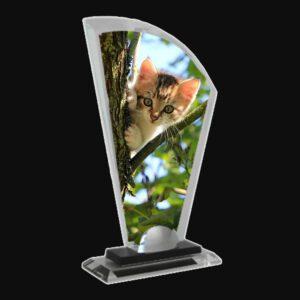 Crystal Fan Photo Display