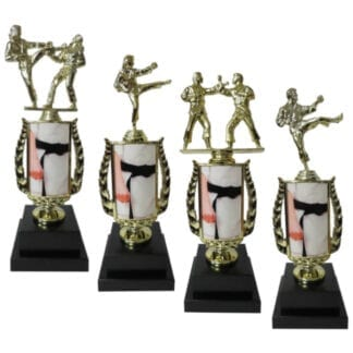 Karate Insert Trophy