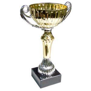 Toa Winners Cup