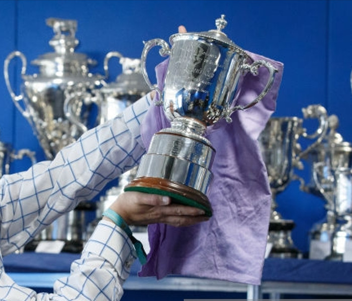 How To Clean Trophy Cups, Trophy Cup Cleaning