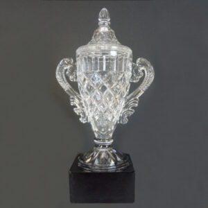 Elizabeth Crystal Vase Award