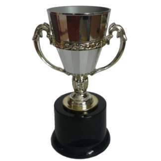 Plastic Trophy Cups