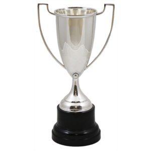Devon Silver Trophy Cup