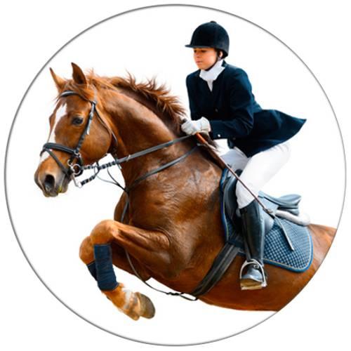 Horse Jump Female