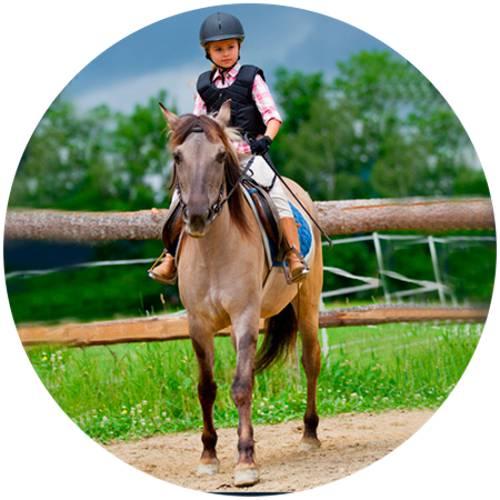 Horse Rider Female