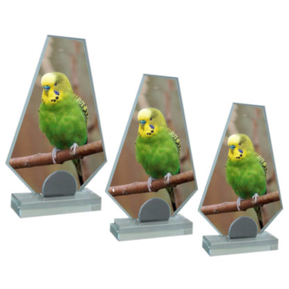 Loreno Glass Photo Display