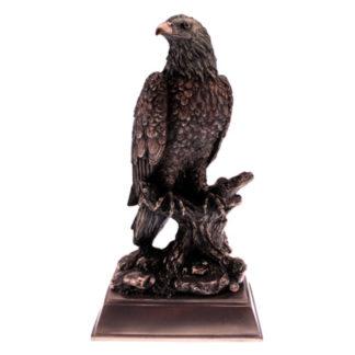 Bronze Eagle Award