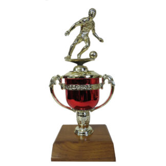 Soccer Mini Trophy Cup