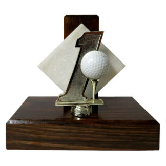 Hole in One Trophy