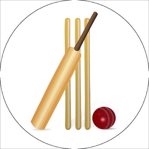 Cricket Ball & Wickets