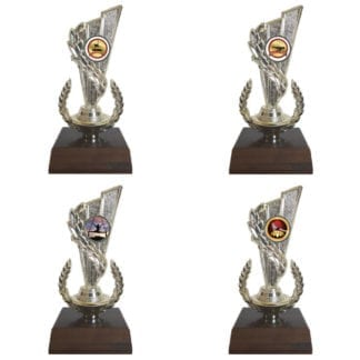 Gymnastics Insert Trophy