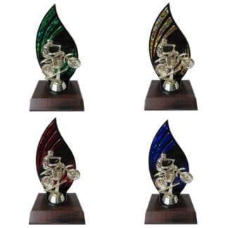 Flameback Motocross Trophy