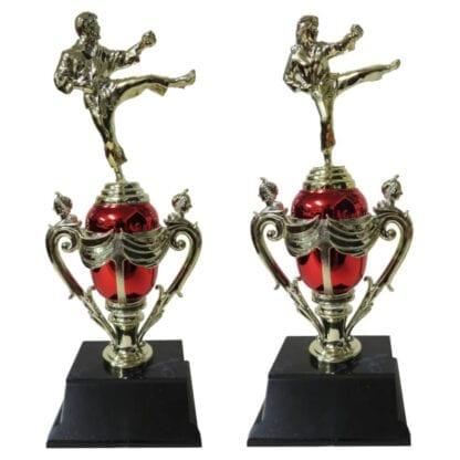 Karate Cup Award