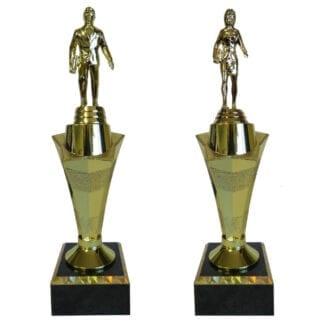 Sales Star Award