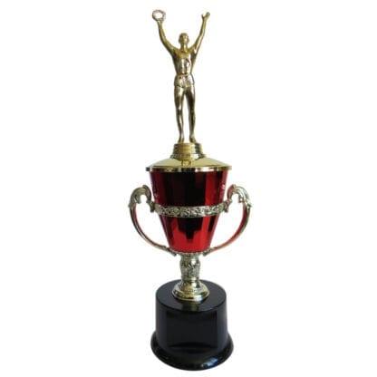 Male Achievement Trophy Cup